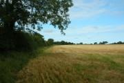 Farmland along a by road