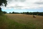 Bales near Callow Green