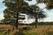 Farmland at Crofthead