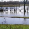 River Soar Flood Plain from Birstall Road