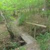 Footbridge in Parrott's Copse