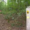 Horsley Jubilee Trail