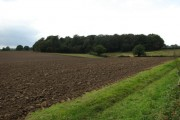 Ploughed field with view towards Larn's Loke Plantation