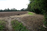 Ploughed field near Woodbastwick Road