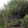 Wheel gates
