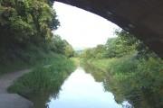 Macclesfield Canal, Congleton, Cheshire