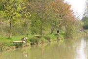 Fishing Lake at Dormston