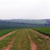 View of farmland at Farnborough