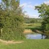 Pool in Grazing Land, near Bollington, Cheshire