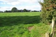 Field near Home Farm