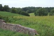 Farmland near Church Lawton, Cheshire