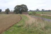 Country lane and farmland