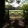 Gate and field near Lower Longwood