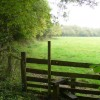 Stile by Chippens Copse