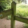 Footpath sign, Chipstead Downs