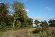 Hare Wood