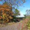 Footpath in autumn