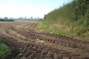 Farmland south east of Moreton Say