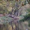 Quarrymill Woodland Park
