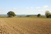 Field on Ham Common