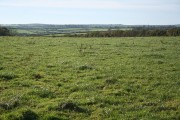 Milton Damerel: near Derworthy Cross