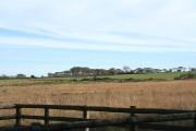 Newton St Petrock: Doves Moor