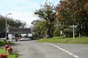 Newton St Petrock: the village
