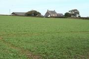 Newton St Petrock: towards Coombe Farm