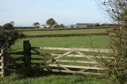 Newton St Petrock: towards Downmoor Cross