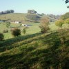 Over the fields towards Eyam