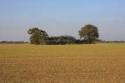 Farmland near Rose Green