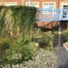 View of courtyard garden