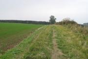 Field margin, Haddon