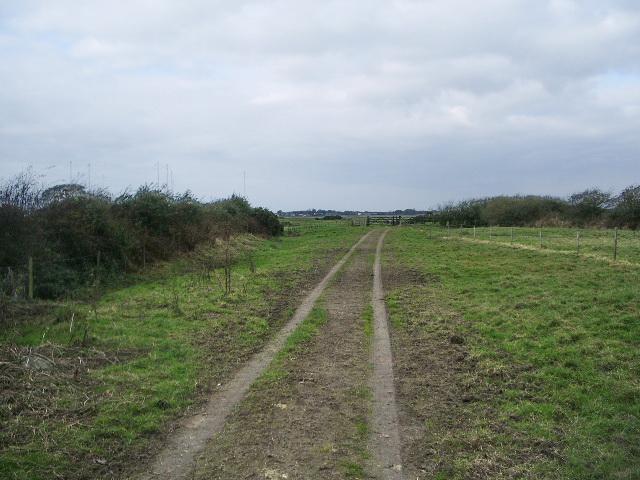 Track/footpath to Newton Marsh