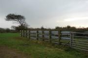 Looking south west in Devon
