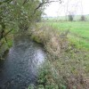 Calow Brook