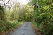 Small road bridge west of Cookbury Wick (1)