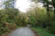 Small road bridge west of Cookbury Wick (2)