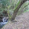 Calow Brook and Footpath