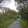 Looking towards the Holsworthy road near Derriton