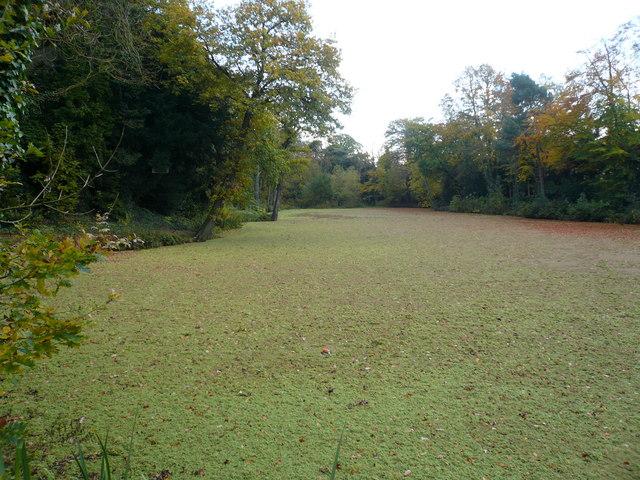 Lake near Tapton Grove