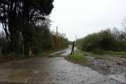 Farm access road east of Holsworthy Beacon