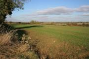 Farmland near Ingoldsby