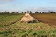 Farmland near Hamby