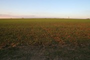 Farmland near Manor Farm