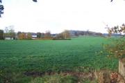 Field Near Lodge Farm, Hine Heath