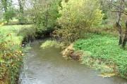 River Waldon from the A388 bridge