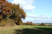 Crop Fields, Lower Netchwood, Shropshire