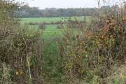 Farmland off Swinford Road