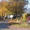Autumn view of Church Lane, Henley